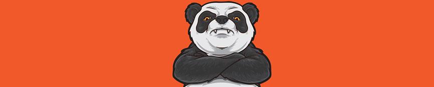 Fixing Panda Algorithm Penalty